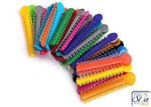 Colored orthodontics2